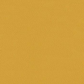 Burch Genesis Mustard