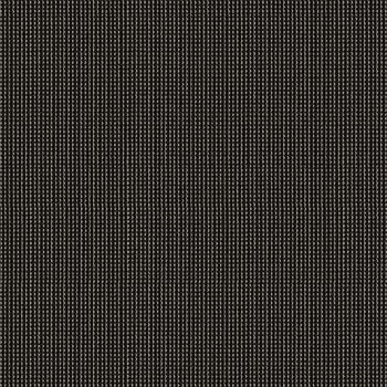 Kravet Pyxis Noir